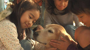 犬と少女達01.jpg
